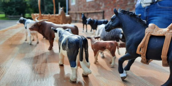 Cattleday auf der Southend Ranch